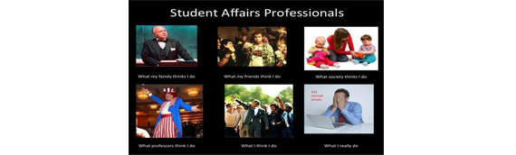 What Student Affairs Professionals Do [IMAGE]